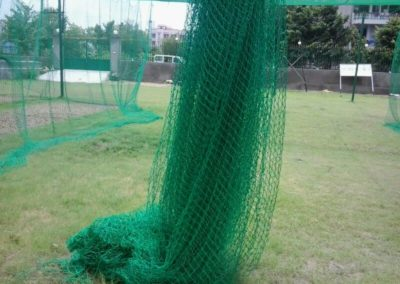 Cricket net1