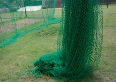 cricket net2