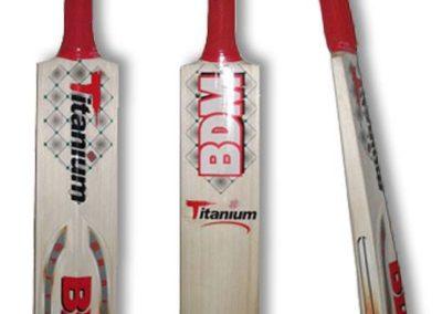 titanium bat