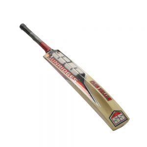 SS KASHMIR WILLOW CRICKET BAT- IKON/CLUB VELLUM (COVER INCLUDED)