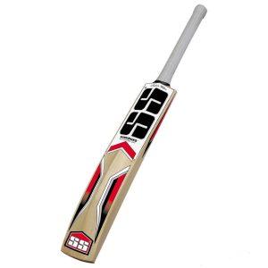SS Master Kashmir Willow Cricket Bat, Short Handle